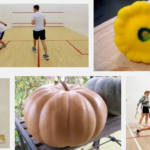 You know you are a seasoned squash player when…