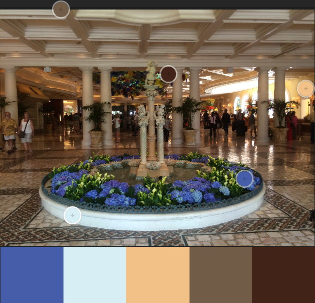 Adobe Color sample